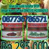 Obat kencing nanah propolis