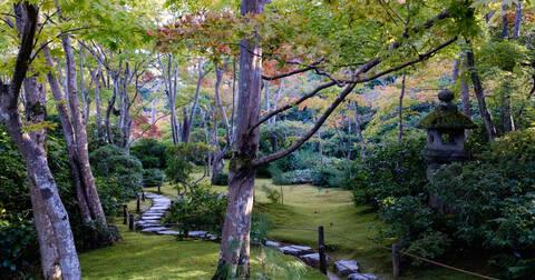 混まない嵐山、大河内山荘で庭園を満喫する