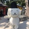 2018ゴールデンウィーク、無料で地酒を楽しめるのは石浦神社!