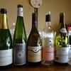 「春ワインを楽しむ会」に参加してきました。