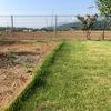根止め部の芝刈