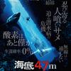 適当過ぎる映画レビュー「海底47m」4点