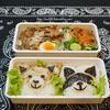 わんこ弁当/Dog Boxed Lunch/ข้าวกล่องเบนโตะที่ทำสำหรับสามี