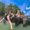 GoPro HERO7 Blackで滑らかに、美しく、心地良い象さんビーチ