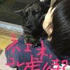 甲斐犬サンの受難かお仕事か?の巻〜ナンデヤネン\(゜A゜)虐待カッ?