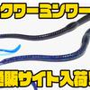【バスプロショップス】生命感あふれるスイミングアクションが特徴「スクワーミンワーム」通販入荷!