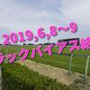 2019,6,8~9 トラックバイアス結果 (東京競馬場、阪神競馬場)