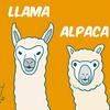 ラマとアルパカ