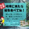 岐阜で天然鮎料理を食べるなら、「おもだか」さんがオススメ。夏季限定!