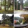 永平寺は、木々で囲まれたとても美しい寺院だった。