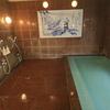 【熊本市】植木温泉 旅館平山~会いたかった泉質!やっぱりこの組み合わせは堪りません!
