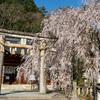 大石神社(おおいしじんじゃ)