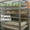 Workaway2軒目!灼熱の南フランスで、ひたすらチーズを作ってみた。