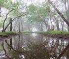 丹沢山・塔ノ岳・鍋割山登山!蒸し暑く大雨の一日にゲッソリ。