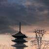 2016年末一人旅 第三週(135)東寺