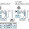 循環器医師に朗報?!心不全にも腎不全にも適応拡大『SGLT2阻害剤』