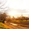 石手川の風景