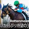 【先週の愛馬のレース結果】長い長いトンネルを抜け出したロッテンマイヤー