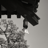 薬師寺西塔の風鐸