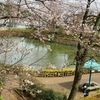 八津池(埼玉県入間)