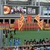 競馬を見るだけなら、香港で泊まる必要などない。  香港競馬 SEASON OPENING 観戦記