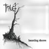 Trauer - Haunting Shores