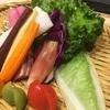 こどもの『野菜嫌いの悩み』について~こどもの理解と対応のポイント~