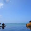 ハネムーン2日目(9月4日):シェラトンワイキキのインフィニティ・プールでのんびり