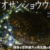 【BOOK NEWS】決定!小学館児童出版文化賞