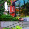 薔薇の咲く中庭『丸の内ブリックスクエア~三菱一号美術館~』