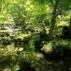 一面緑の世界!三重県隠れ名スポット!北畠氏館跡庭園(北畠神社)