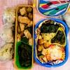 【今日のお弁当】鶏むね肉とズッキーニのオリーブオイル炒め&お弁当箱選びの落とし穴。