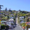 世界一急な坂!ボールドウィンストリートの行き方@ダニーデン|ニュージーランド夫婦旅