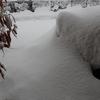 3年振りの大雪