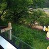 明日から6月。雨の日の琵琶湖大回り乗車。(日曜日、雨のち曇り)