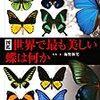 鍵穴を抜ける蝶