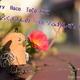 gallery Haco ToCo(ハコトコ)で、にじいろくまさんのコルクふれんずを撮影させていただきました!