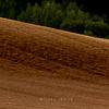 近づく麦秋 #3 - The time of the barley harvest is near at hand.