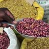 アフリカ タンザニアが豆輸出に本腰か?