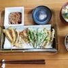 地魚と野草の天ぷら定食