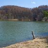 白樺湖(長野県麻積)