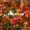 ○○の秋と言えば「旅行の秋」~5年分の秋の旅をまとめてみました~