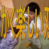 【動画】双子の利点を感じられるようになってきた~男育児の楽しさと大変さ~