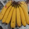 台湾バナナを買う
