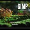 Gimp 2.10.x macOS版について(McGimp 2.10)