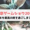 東京ゲームショウ2017、今年の目玉と参加した感想