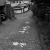 ぶらり独りウォーキング 旧東海道 保土ヶ谷宿 その4