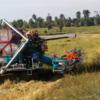 タイの稲刈り…ハーベスター