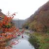 湯原温泉「砂湯」(岡山県真庭市)ダムの真下の川温泉!