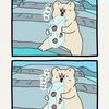 白悲熊「りんご」